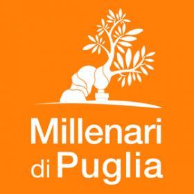 Calendario Eventi Ostuni 2020.Comune Di Fasano Br A Piedi Verso Il Gigante Buono